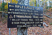 "Vandalism to the Ethan Pond Trail (Appalachian Trail) sign in the New Hampshire White Mountains. A hiker has scratched out ""Ethan Pond"" and carved the Appalachian trail symbol into the sign. The photo is from October 2017."
