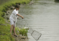 Anabel North (9), after getting bored with a pole, tries fishing with a basket during a fishing derby Saturday June 11, 2005, in Bellbrook, Ohio.