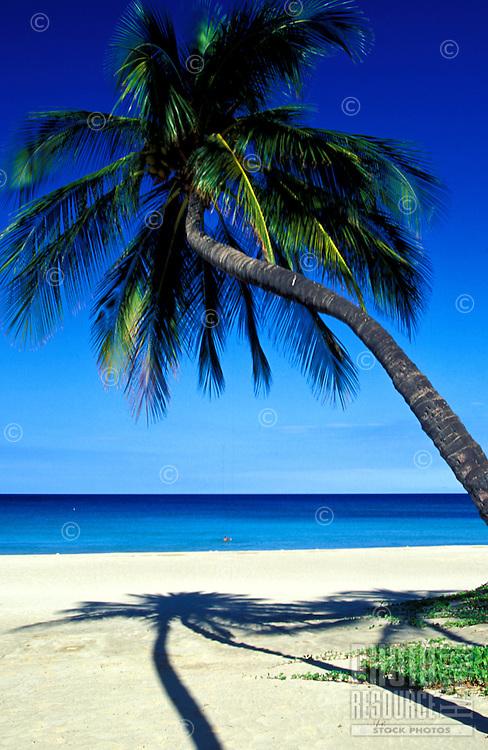 Scenic Hapuna Beach with white sand