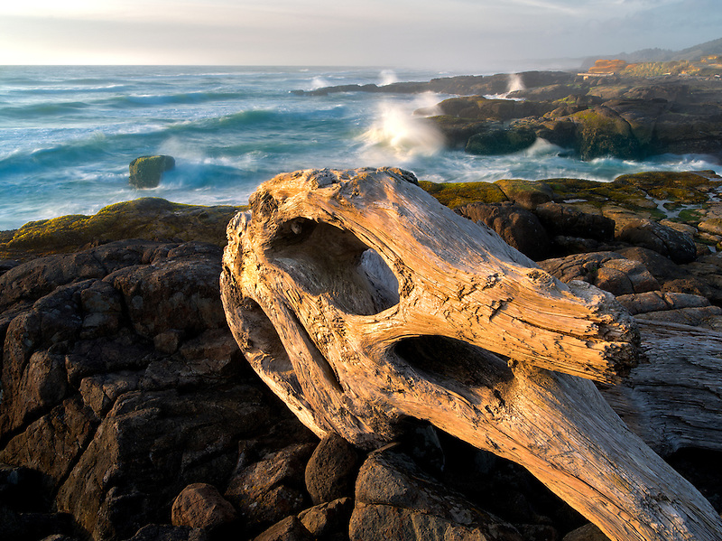 Driftwood and crashing waves at Smelt Sands State Park, Oregon