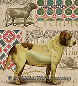 Isabella, REALISTIC ANIMALS, REALISTISCHE TIERE, ANIMALES REALISTICOS, paintings+++++,ITKE066172-S-LC,#a#, EVERYDAY ,dogs ,collage