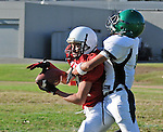Football action. Wide receiver tries to hang onto the ball while being tackled.