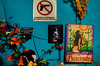 "A ""No weapons"" sign, together with a painting of a nude woman, are hung on the wall in a street sex bar in San Salvador, El Salvador, 8 April 2018. Although prostitution is not legal in El Salvador, dozens of street sex workers, wearing provocative miniskirts, hang out in the dirty streets close to the capital's historic center. Sex workers of all ages are seen on the streets but a significant part of them are single mothers abandoned by their male partners. Due to the absence of state social programs, they often seek solutions to their economic problems in sex work. The environment of street sex business is strongly competitive and dangerous, closely tied to the criminal networks (street gangs) that demand extortion payments. Therefore, sex workers employ any tool at their disposal to struggle hard, either with their fellow workers, with violent clients or with gang members who operate in the harsh world of street prostitution."