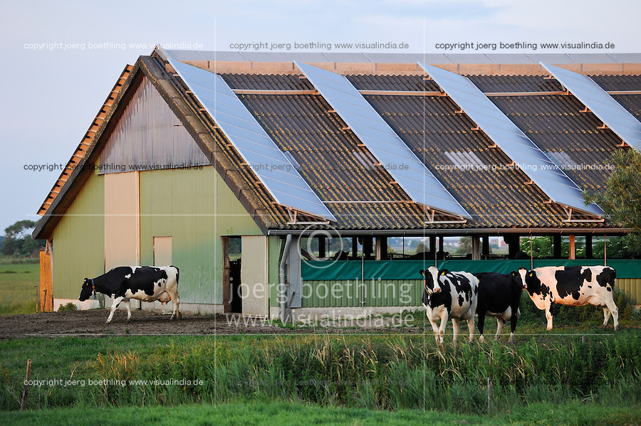 GERMANY Northsea Island Pellworm, solar panel on stable roof at milk cow farm / DEUTSCHLAND Nordseeinsel Pellworm, Solar auf Stalldach eines Milchviehbetriebes