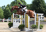 12 July 2009: Colin Davidson riding Draco during the showjumping phase of the CIC 3* Maui Jim Horse Trials at Lamplight Equestrian Center in Wayne, Illinois.