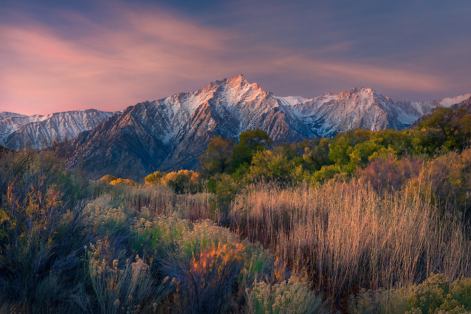The warm glow of pre-sunrise light on Lone Pine peak, complemented by a garden of desert flora in the valley below.