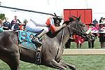 May 15, 2015: Irish Jasper with Kendrick Carmouche wins the 30th running of the Grade III Miss Preakness Stakes, 3-year old fillies, going 6 furlong at Pimlico Racetrack. Trainer: Derek Ryan. Owner: Derek Ryan. Sue Kawczynski/ESW/CSM