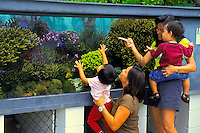 Young children and their moms learn about and enjoy watching colorful fish and live corals in a Coral Farm exhibit at the Waikiki Aquarium, Kapiolani Park, Honolulu