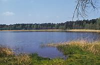 Sarnekower See, Schleswig-Holstein, Deutschland