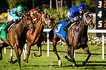 OLDSMAR, FL - MARCH 11: Dickinson #3, ridden by Paco Lopez, comes down the final stretch and wins the Hillsborough Stakes on Tampa Bay Derby Day at the Tampa Bay Downs on  March 11, 2017 in Oldsmar, Florida. (Photo by Douglas DeFelice/Eclipse Sportswire/Getty Images)