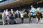 LEXINGTON, KY - APRIL 16: #9 Exaggerated wins the Giant's Causeway Stakes at Keeneland on April 16, 2016 in Lexington, Kentucky. (Photo by Jessica Morgan/Eclipse Sportswire/Getty Images)