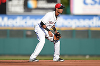 Rochester Red Wings shortstop Pedro Florimon (31) during the second game of a doubleheader against the Buffalo Bisons on July 6, 2014 at Frontier Field in Rochester, New  York.  Rochester defeated Buffalo 6-1.  (Mike Janes/Four Seam Images)