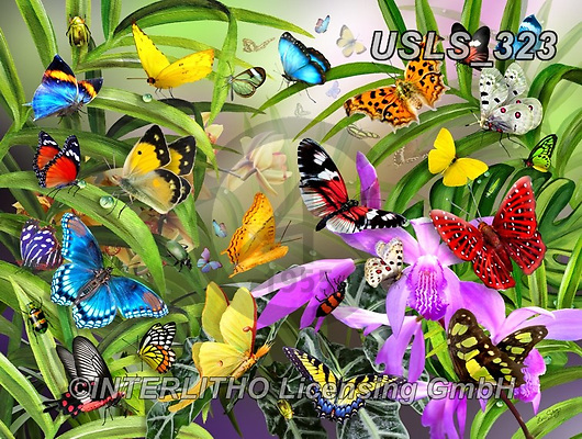 Lori, REALISTIC ANIMALS, REALISTISCHE TIERE, ANIMALES REALISTICOS, zeich, paintings+++++Tropical Butterflies_2_sunsout,USLS323,#a#, EVERYDAY ,puzzle,puzzles