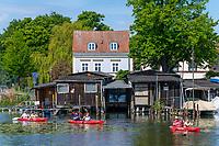 Paddler auf dem Brandenburger Stadtkanal, hinten Bootshäuser, Brandenburg an der Havel, Brandenburg, Deutschland