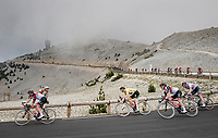 yellow jersey / GC leader Tadej Pogacar (SVN/UAE-Emirates) coming down the Mont Ventoux<br /> <br /> Stage 11 from Sorgues to Malaucène (199km) running twice over the infamous Mont Ventoux<br /> 108th Tour de France 2021 (2.UWT)<br /> <br /> ©kramon