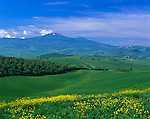 Tuscany, Italy, <br /> Scattered farms and green rolling hills of the Val d'Orcia beneath the distant Mount Amiata - near San Quirico d'Orcia