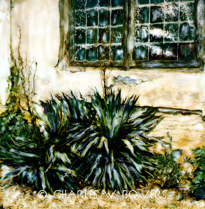 Old yucca plants stand as sentinels around a Boboli building.<br /> <br /> -Limited Edition of 50 Prints