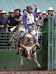 Jessi Atkin of Laytonville, Ca. competes in the Smackdown Bull Riding event at Fuji Park Fairgrounds in Carson City, Nev., on Friday, June 5, 2015. The event continues Saturday night at 6 p.m. Tickets are $12 and available in advance from Casino Fandango and the Carson City Visitors Bureau or at the gate.  <br /> Photo by Cathleen Allison/Nevada Photo Source