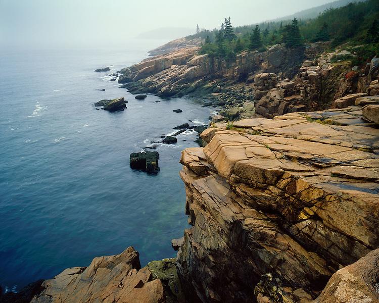 Foggy morning light along the cliffs near Sand Beach; Acadia  National Park, ME