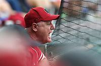 An Arkansas fan reacts, Monday, June 7, 2021 in the fourth inning of the NCAA Fayetteville Regional at Baum-Walker Stadium in Fayetteville. Check out nwaonline.com/210608Daily/ for today's photo gallery. <br /> (NWA Democrat-Gazette/Charlie Kaijo)
