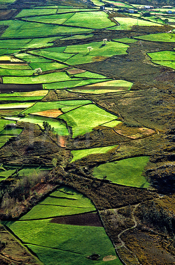 Spain. Asturias.  Cantabria.  Field patterns in agricultural valley. Spring.
