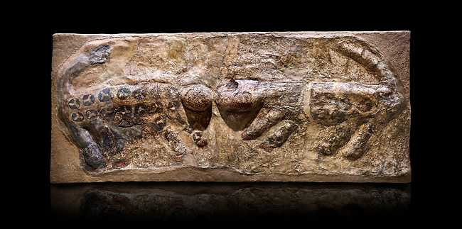 painted leopard relief. The people of Catalhoyuk had a special religious meaning with leopards. These platered reliefs have many coats of plater indicating their long term importance. 6000 BC,  Catalhoyuk Collections. Museum of Anatolian Civilisations, Ankara. Against a black background