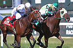 September 19, 2015. Uncle Dave (green cap), Jorge Vargas up, beats Beyond Smart (1A, with Mario Pino) by a head to win the $100,000. Alphabet Soup Handicap Stakes, one and 1/16 miles on the turf for registered PA breds three and upwards, at  Parx Racing in Bensalem, PA.  Trainer is Marcos Zulueta, owner M-Z Racing Partnership. (Joan Fairman Kanes/ESW/CSM)