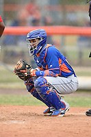 New York Mets catcher Adrian Abreu (82) during a minor league spring training game against the St. Louis Cardinals on March 27, 2014 at the Port St. Lucie Training Complex in Port St. Lucie, Florida.  (Mike Janes/Four Seam Images)