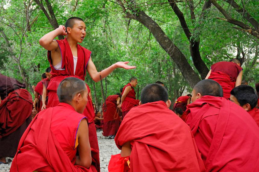 Novice Gelugpa monk, with mala beads, debates Buddhist philosophy in the courtyard at Drepung monastery, Lhasa, Tibet, China.