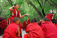 Novice Gelugpa monk, with mala beads, debates Buddhist philosophy in the courtyard at Drepung monastery, Lhasa, Tibet, China.