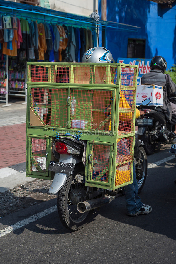 Yogyakarta, Indonesia.  Motorbike, Street Traffic.  Cages for Carrying Birds or other Small Animals.