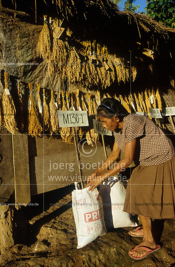 PHILIPPINES Negros, village Sitio Tabidiao, rural community seed bank, woman with different local rice seeds for organic rice cultivation by SRI System of rice intensification / PHILIPPINEN Negros village Sitio Tabidiao, genossenschaftliche reis Saatgut Bank, Frau mit verschiedenen lokalen Reissorten für Bio Reisanbau der nach SRI Methode System zur Reis Intensivierung angebaut wird u.a. Senkung des Wasserverbrauch und Erzielung von hoeheren Ertraegen