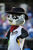 Quad Cities River Bandits mascot Rascal during a game against the Bowling Green Hot Rods on July 24, 2016 at Modern Woodmen Park in Davenport, Iowa.  Quad Cities defeated Bowling Green 6-5.  (Mike Janes/Four Seam Images)