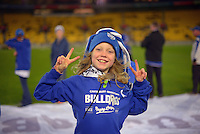 A Bulldogs fan at the NRL Premiership round seven match between the NZ Warriors and Canterbury Bulldogs at Westpac Stadium, Wellington, New Zealand on Saturday, 16 April 2016. Photo: Dave Lintott / lintottphoto.co.nz