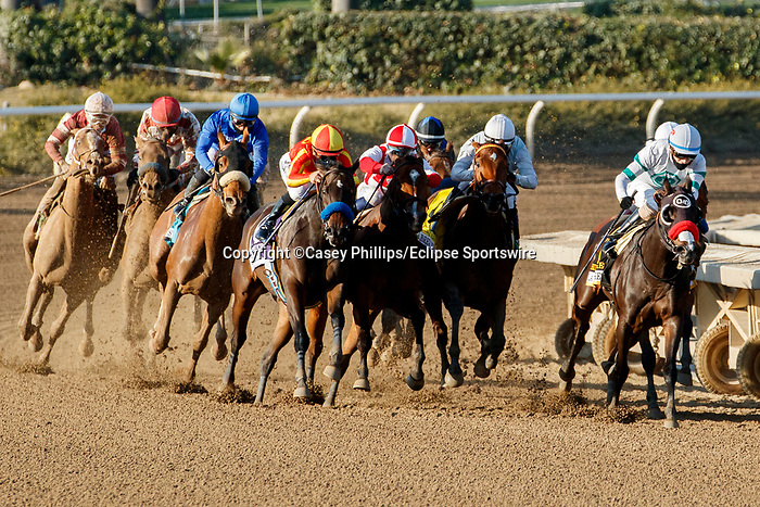 ARCADIA, CA DECEMBER 26: The field of the La Brea Stakes entering the turn on December 26, 2020 at Santa Anita Park in Arcadia, CA<br /> (Photo by Casey Phillips/Eclipse Sportswire/CSM.)
