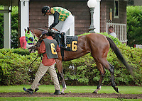 Dangerous Vixen before The Dashing Beauty Stakes  at Delaware Park on 6/27/13