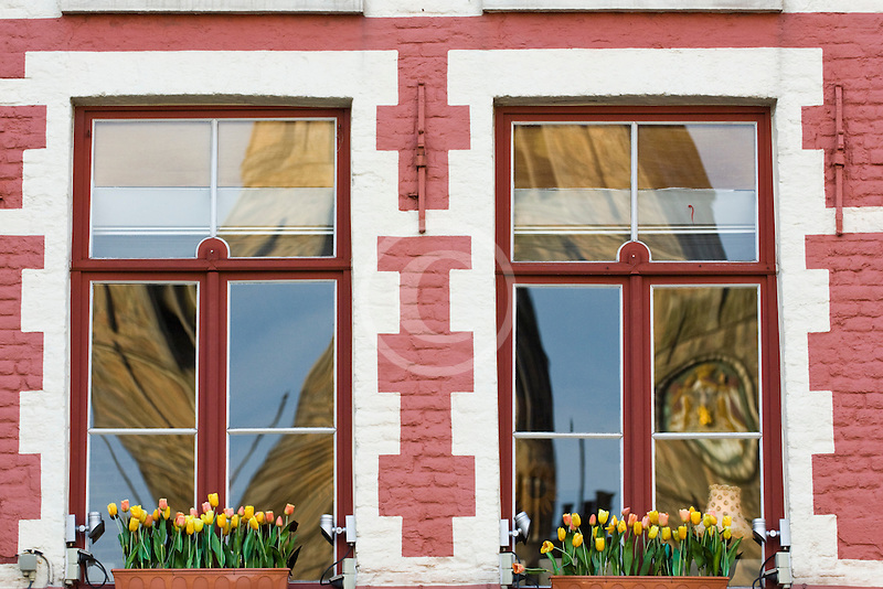 Belgium, Bruges, Window with flowerboxes and reflection of Belfry Tower