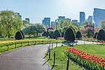 Spring in the Boston Public Garden, Boston, Massachusetts, USA