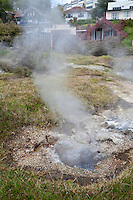 Geothermal Steam Flows from Hot Springs and Thermal Vents in the Maori Village of Ohinemutu, a suburb of Rotorua, north island, New Zealand.
