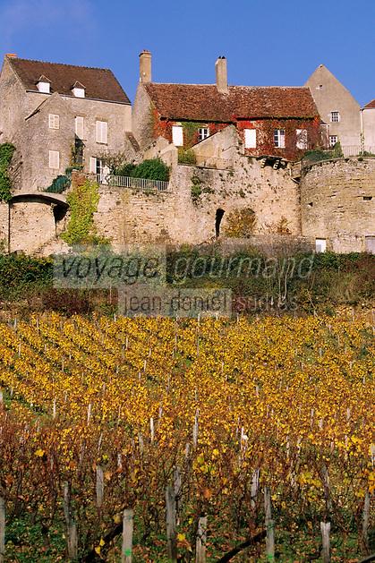 Europe/France/89/Yonne/Vézelay: Maisons du village et le vignoble