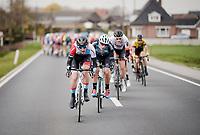 Mikkel Bjerg (DEN/Hagens Berman Axeon)<br /> <br /> 74th Nokere Koerse 2019 <br /> One day race from Deinze to Nokere / BEL (196km)<br /> <br /> ©kramon