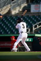 Jupiter Hammerheads third baseman Luis Pintor (3) at bat during a game against the Palm Beach Cardinals on August 4, 2018 at Roger Dean Chevrolet Stadium in Jupiter, Florida.  Palm Beach defeated Jupiter 7-6.  (Mike Janes/Four Seam Images)