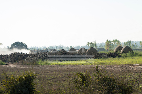Amritsar, Punjab, India. Making charcoal.