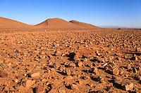 Africa,Morocco,desert