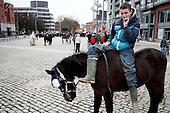 City Horses by Piotr Malecki