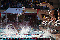 STANFORD, CA - February 17, 2018: Benjamin Ho at Avery Aquatic Center. The Stanford Cardinal defeated the California Golden Bears 151-149 on Senior Day.