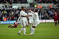 Saturday 2nd March 2013<br /> Pictured: (L-R) Luke Moore, Wayne Routledge.<br /> Re: Barclays Premier Leaguel, Swansea  v Newcastle at the Liberty Stadium in Swansea.