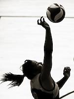 140301 College Volleyball - Wellington Regional Tournament