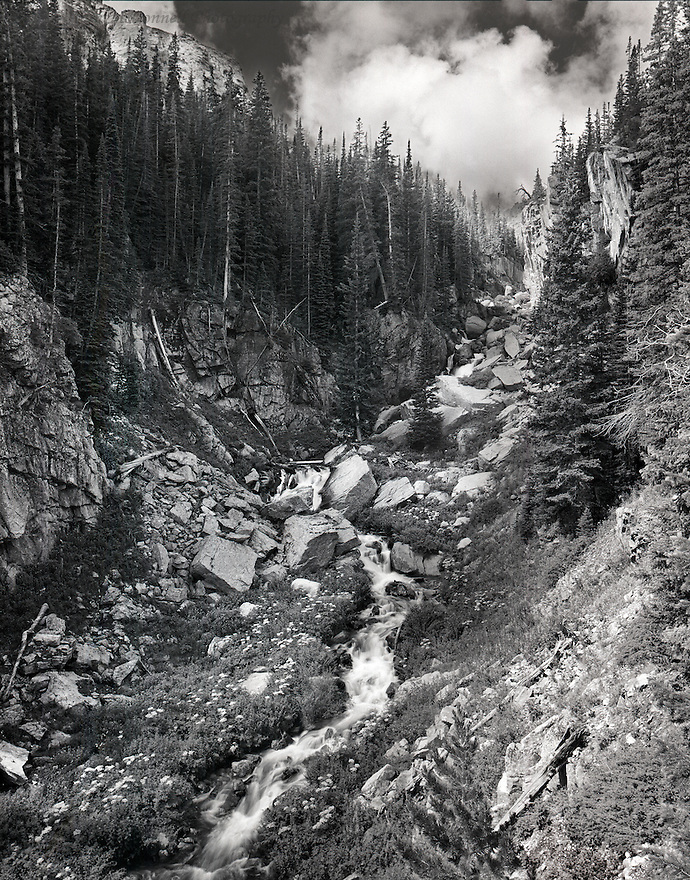 """""""Cascades From The Loch""""<br /> Rocky Mountain National Park, Colorado<br /> 2012<br /> <br /> Hiking from the Glacier Gorge trailhead to The Loch, I paused at many places to absorb the smells, sounds, and vistas of the Glacial Gorge. A short distance from my destination, I set up on this precipice to capture Glacier Creek tumbling down from the alpine lake. The cascading creek directed my eyes toward the textures in the rock, to the dense forest, all of which are amplified by the large puffy clouds in the deep blue sky.<br /> <br /> 4 x 5 Large Format Film"""