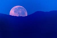 CALI - COLOMBIA, 16-08-2019: Vista de a luna al amanecer del 16 de agosto de 2019 en el Oeste de Cali, Colombia. / The Moon in the sunrise on August 16, 2019 at Cali West, Colombia. Photo: VizzorImage/ Gabriel Aponte / Staff